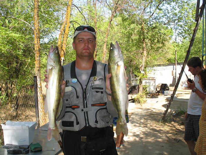 золотая рыбалка на ахтубе
